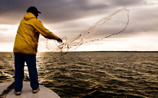 Casting for bait on Apalachicola Bay